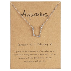12 Constellations Silver Crystal Zodiac Sign Pendant Necklace Women Card Jewelry Aquarius