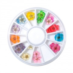 12 Colors DIY Nail Art Dried Flowers 3D Flower Decoration Nails Stickers Tips BM17Y078M0